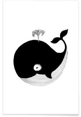 Baby walvis illustratie poster