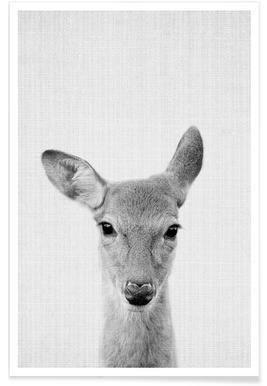 Cerf - Photo en noir et blanc affiche