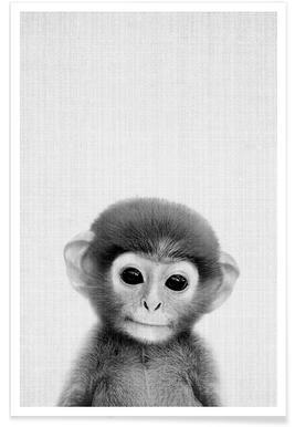 Affe-Schwarz-Weiß-Fotografie Poster