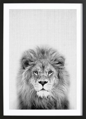 Lion ingelijste print