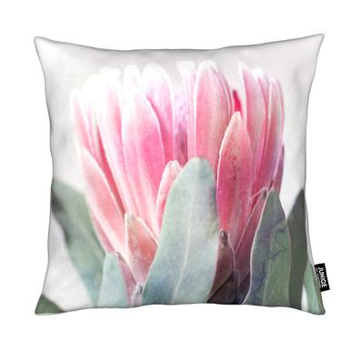 Print 226 Coussin