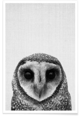 Owl Barn Black & White Photograph Poster