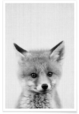 Photo monochrome de bébé renard affiche