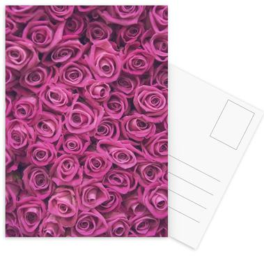 Pink Roses Postcard Set