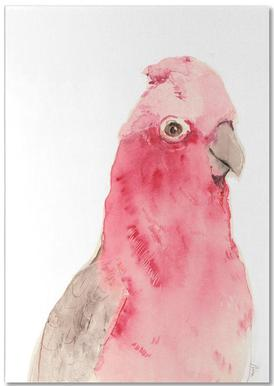 Pink Parrot Notepad