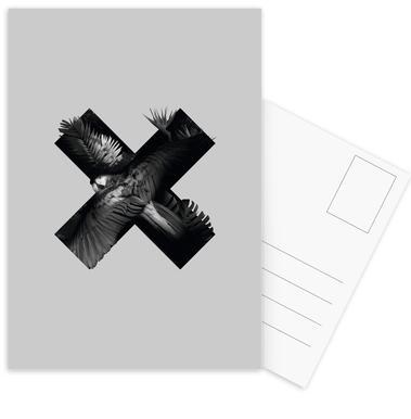 Xotic Postcard Set