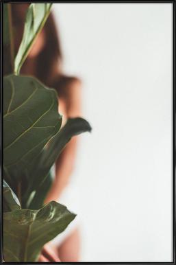 Ficus Lyrata 1 Poster im Kunststoffrahmen