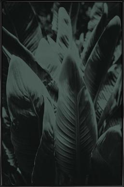 Green Banana Poster in Standard Frame