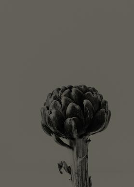 Artichoke Brown -Leinwandbild