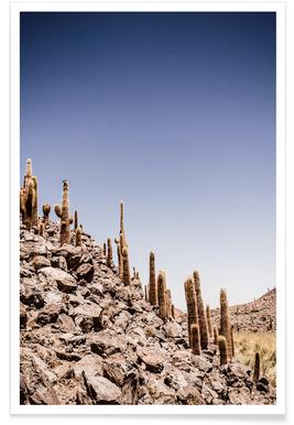Atacama Cacti Family poster