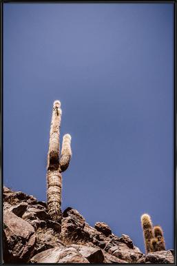 Atacama Cacti Family 2 Framed Poster