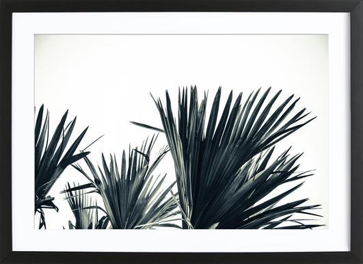 Palm Shade 3 Poster in houten lijst