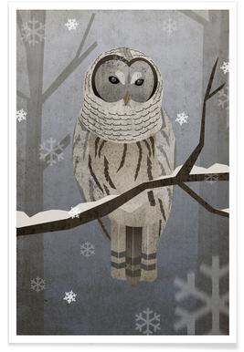 Schnee-Eule Poster