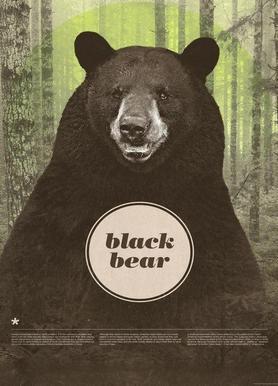 Black Bear canvas doek