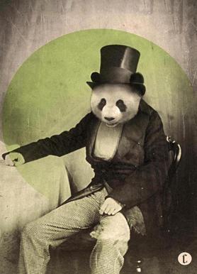 Proper Panda -Leinwandbild