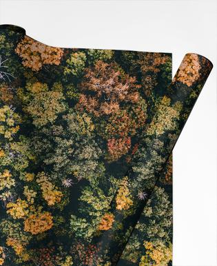 Tones of Autumn Gift Wrap