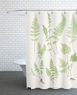 Ferns -Duschvorhang