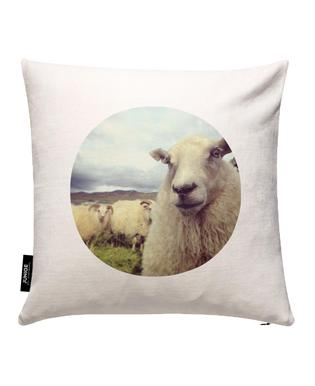 Whats Up Cushion Cover