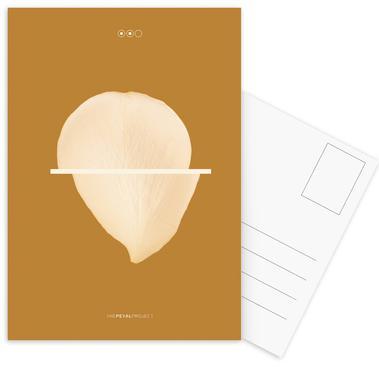 Petal Project No. 02 Postcard Set