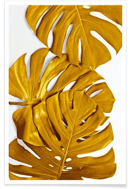 Monstera Gold Poster