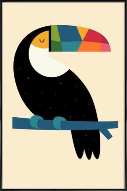 Rainbow Toucan Affiche sous cadre standard