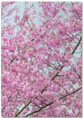 Pink Blossom Notitieboekje