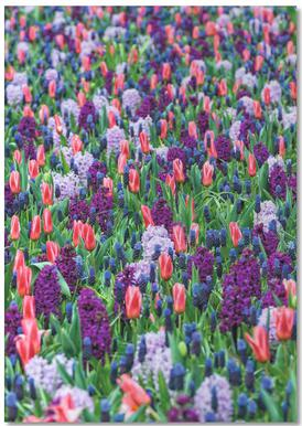 Tulip Field Purple bloc-notes