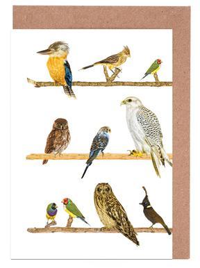 Birds Set de cartes de vœux