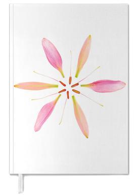 Lilly Flower agenda