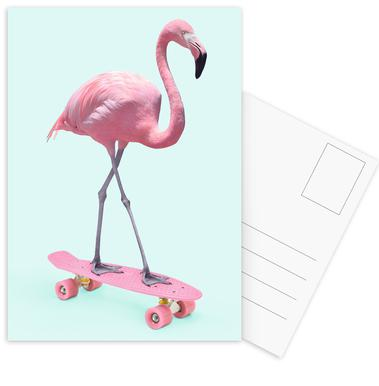 Skate Flamingo Set de cartes postales