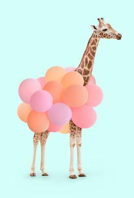 Party Giraffe alu dibond