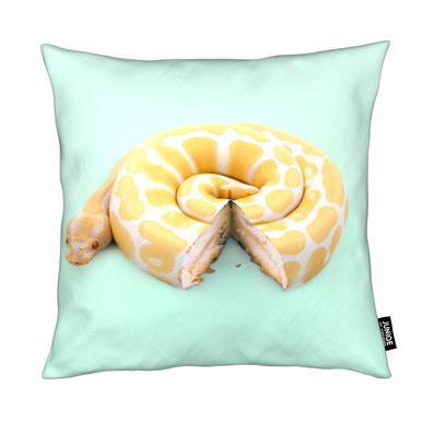Snake Cake Cushion