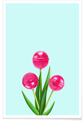 Lollipop Tulips 2 Poster