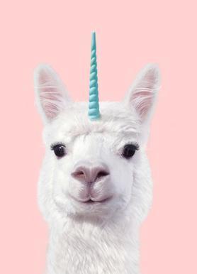 Alpaca Unicorn Impression sur toile