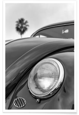 California Beetle Poster