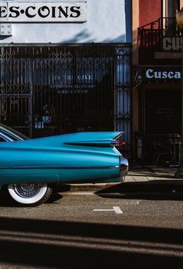 Turquoise Fins -Acrylglasbild