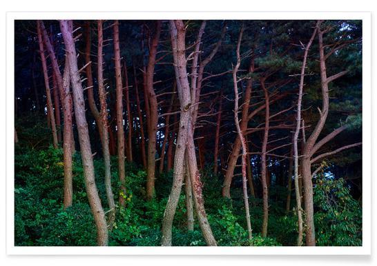 Busan Trees Poster