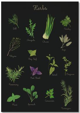 Herbs Carnet de note