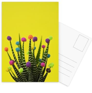 Haworthia in Bloom Postcard Set
