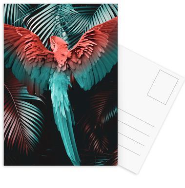 Tropical Storm Set de cartes postales