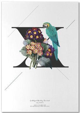 Botanical Alphabet - X Bloc-notes