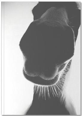 A Horse of Course No.1 Notebook