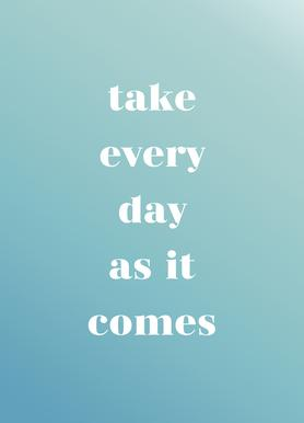 Take Every Day toile