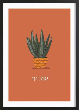 Aloe Vera Poster im Holzrahmen