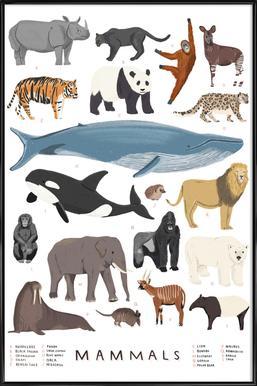 Mammals -Bild mit Kunststoffrahmen
