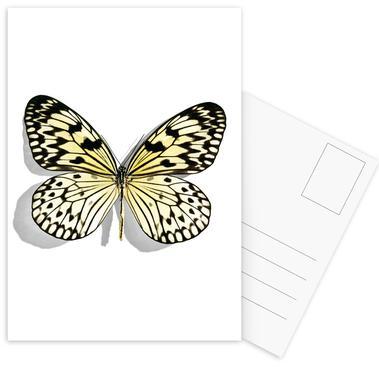 Butterflies 7 ansichtkaartenset