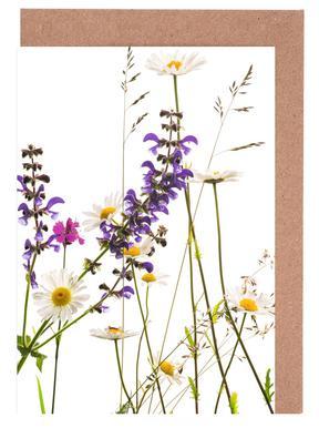 Flora - Margerite Grußkartenset