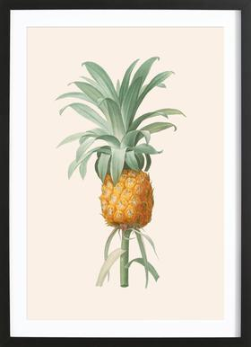 Ananas Poster in Wooden Frame