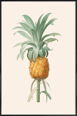 Ananas -Bild mit Kunststoffrahmen
