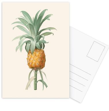Ananas Postcard Set
